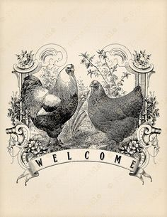 Instant Download Printable Chicken Welcome FARM Rooster Hen iron on Fabric Image Transfer Country Kitchen Print Digital Graphics clipart