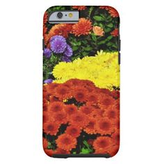 Cheery Bright Chrysanthemums iPhone 6 Case