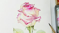 How to Paint a Rose with Watercolors | Heimtextil 2018 Frankfurt