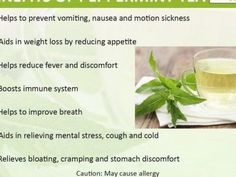 An infographic on the health benefits of peppermint tea #knitting #patterns #kni