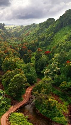 Incredible hiking trails in Hawaii! Click through to see 27 places you have to visit in Hawaii!