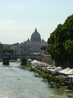 View of the grand St. Peter Basilica