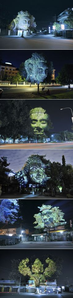 Cambodian Trees  digital projection work by Clement Briend