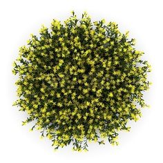 download royalty free images similar to id 109888955 top view of umbrella tree from shutterstocks library of millions of high resolution stock photos awesome office table top view shutterstock id