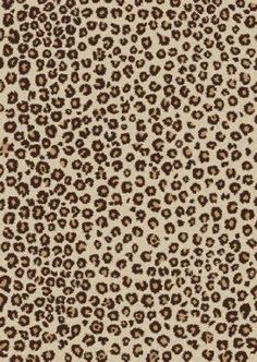 1000 Ideas About Leopard Rug On Pinterest Area Rugs