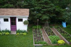 .Raised Beds