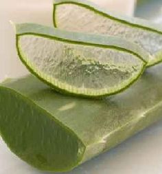 ALOE VERA is excellent at healing wounds, treating eczema, and soothing minor burns.  This pure gel can be placed directly on the skin for pain relief and healing.  Keeping an aloe vera plant in the home is an excellent, simple idea, because it provides quick access to this plant's many benefits.