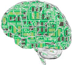 Neuroedukacja - ciekawe artykuły
