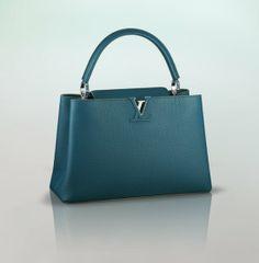 Louis Vuitton: Louis Vuitton Capucines MM ($5,150)