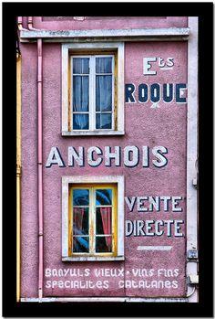 Collioure, les anchois  France