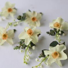 Didn't know you could use narcissi for Boutonnieres
