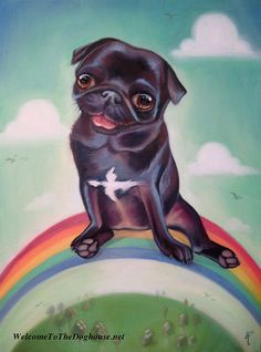 Custom Pug Art :: Pashy the Pug by Alexis Trice :: www.welcometothedoghouse.net