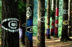 Resultados de la Búsqueda de imágenes de Google de http://esphoto500x500.mnstatic.com/bosque-de-oma_77083.jpg