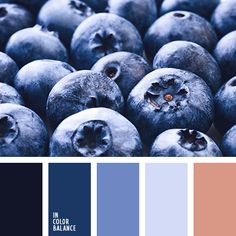 Цветовая палитра №3578