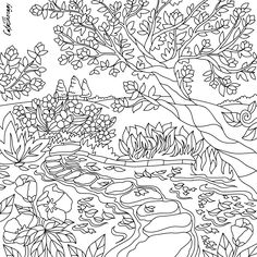 Twenty Adult Coloring Pages