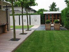 giardino alberi e legno