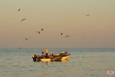 Oman photos - fishermen