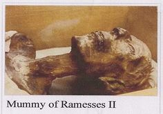 http://ift.tt/2rI0EYg that in 1974 the mummy of Ramesses II regarded as the greatest pharaoh was send to Paris. He was given a passport on which his occupation was listed as King(deceased) and was received with full military honours on a red carpet like any other visiting head of state.