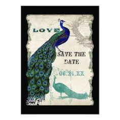 =>Sale on          Vintage Peacock 5 - Save the Date Personalized Invites           Vintage Peacock 5 - Save the Date Personalized Invites in each seller & make purchase online for cheap. Choose the best price and best promotion as you thing Secure Checkout you can trust Buy bestHow to       ...Cleck Hot Deals >>> http://www.zazzle.com/vintage_peacock_5_save_the_date_invitation-161977110625005696?rf=238627982471231924&zbar=1&tc=terrest