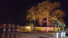 Subtle warm tones uplighting the beautiful trees in the Coach House Barn Courtyard #outdoorlighting #weddingday #weddinglighting #berkshire #dorneycourt #absolute_taste