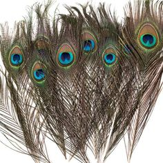 Buy Peacock Feathers Online in Natural Shades Wedding Looks, Diy Wedding, Wedding Ideas, Peacock Decor, Feather Hat, Kentucky Derby Hats, Peacock Feathers, Unique Weddings, Dream Catcher