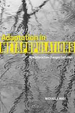Adaptation in Metapopulations