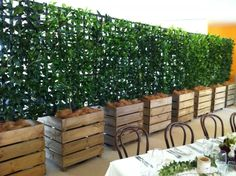Espalier in wooden cubes, large planters with trellis to screen
