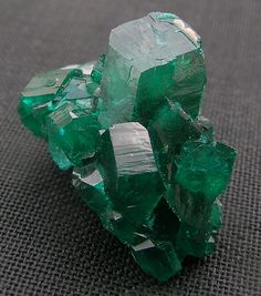 Dioptase Emerald Green Dioptase crystals from the Tantara Mine in Katanga,Congo