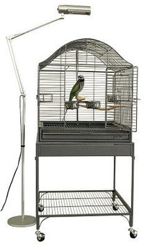 Soundproof Bird Cage Audimute Soundproofing Feathered