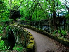 Jesmond Dene Bridge, Newcastle Upon Tyne, England