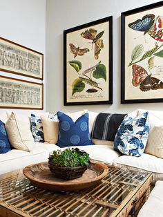 Designer Kari Arendsen keeps it casual in this living room where vintage lithographs of butterflies and moths pull the same navy and blue tones out of the sofa's down-filled pillows and throw.