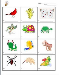 Dichotomous Key to Classify a Crazy Animal Kingdom (Classification).  This is a very simple and elementary classification key that can be used at the beginning of a unit on classification. The purpose of this key is to teach the students how to use a dichotomous key. $