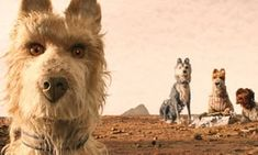Isle of Dogs review – Wes Anderson's scintillating stop-motion has bite | Film | The Guardian