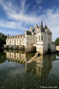 """LOIRE - #Chenonceaux, Loire, #France must go to the Loire valley and see all the castles """"chateaux"""",Catherine de Medicis, wife of Henry II must be so angry when her husband gave this castle to his mistress Diane de Poitiers as a gift  http://stampingwithbibiana.blogspot.com/"""