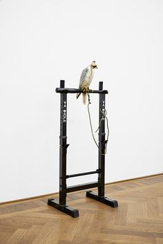 Anne Imhof at Kunsthalle Basel