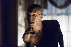 Da The Vampire Diaries a True Blood e The Strain: tutte le sfumature del vampiro seriale