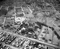 El antiguo Parque de la Lama en una foto aérea de 1934. Este predio era propiedad del fraccionador de la colonia Nápoles, Jerónimo de la Lama, quien lo conservó como área verde; en 1941 se realizó aquí la primera exposición de la Asociación Canina Mexicana, y veinticinco años más tarde, en este lugar comenzó la construcción del fallido Hotel de México, que para 1992 se convertiría en el World Trade Center. Abajo destaca la Avenida de los Insurgentes; la toma es hacia el poniente, y la…