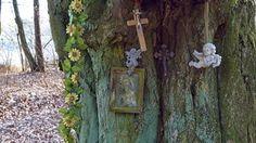 Tajemnicza kapliczka schowana w lesie przed światem