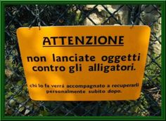 INCREDIBILE... MA VERO !! - 03/03/2012