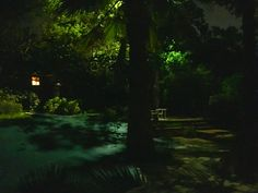 #Dallas #Landscape #Lighting installed all #LED lights to achieve this #Moonlighting effect at our customer's house in #HighlandParkTX . Free estimates on #LEDlighting at 214-202-7474 or http://www.dallaslandscapelighting.net/ #outdoorlighting #dallaslighting #landscapelighting #leds #friscotx #planotx