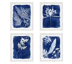 http://www.potterybarn.com/products/cyanoptype-prints/?pkey=call-art