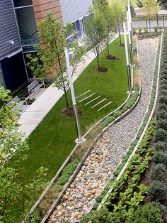 Urban raingarden at Gateway Community College by Towers|Golde