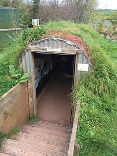 Underground Shelter, Underground Homes, Modern History, British History, Anderson Shelter, Homestead Property, Handyman Projects, Bomb Shelter, Surviving In The Wild