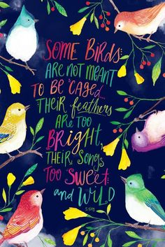 Some birds are not meant to be caged.. their feathers are too bright, their songs to sweet and wild. Hand lettered inspirational quote. Beautiful bird paintings by PRINTSPIRING. Inspirational Wall Art. Boho. Wild and free.