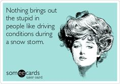 Nothing brings out the stupid in people like driving conditions during a snow storm.