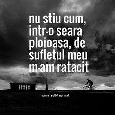 Nu stiu cum, intr-o seara ploioasa, de sufletul meu m-am ratacit vama - suflet normal More Than Words, Passion, Messages, Feelings, Sayings, Quotes, Image, Quotations, Lyrics