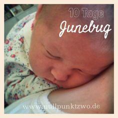 10 Tage Junebug