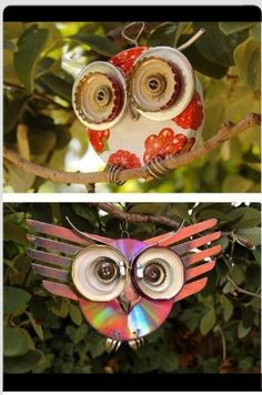 What a cool idea! Make owls out of anything.