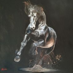 """Shadows and Dust"" 24x24 oil on canvas. Can't wait to get prints of this beauty! Reference provided by Emma Mclean #Friesian #friesianhorse #oilpainting #horsepainting #friesianlove #blackhorse"