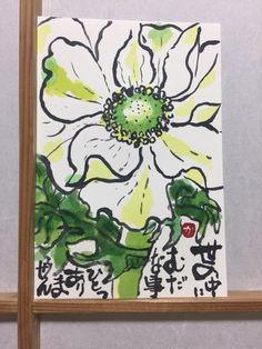 2017/2/9 アネモネ(すみちゃん先生の真似っこ) : 絵手紙日記